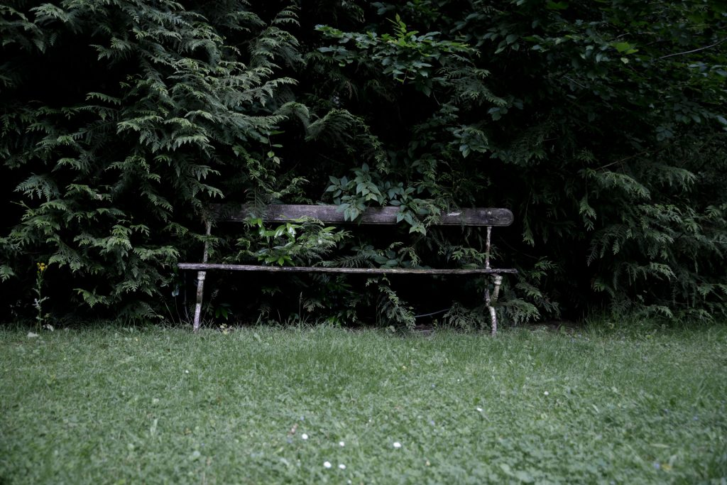 Bild - Kanzlei Endler Strafrecht Garten